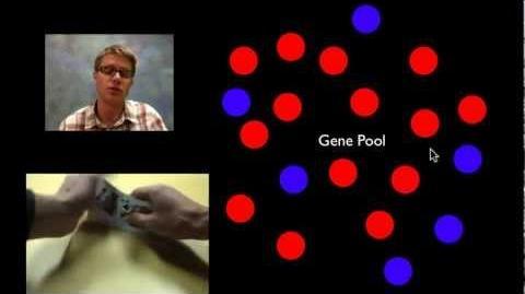 Microevolution-0