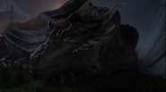 Screenshot drago 12