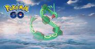 Rayquaza Pokemon G