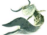 Elder Dragon (Monster Hunter)