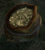 Giant Coin Pouch
