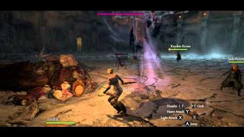 Strider with only Rusted Daggers vs Chamber of Fate. Victory in 48 seconds. No damage.
