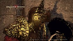 Dragons dogma gold knight ergogenic aids and steroids