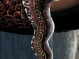 Dragon's Vein