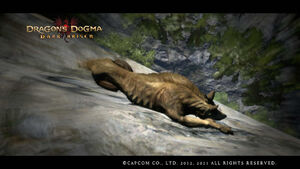 Dragon's Dogma Dark Arisen Screenshot lounge