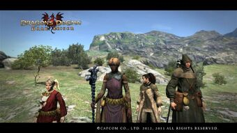 Armor Clothing And Weapon Sets Dragon S Dogma Wiki Fandom Dragon's dogma, like many other rpgs, offer players the freedom to go for various armor types, which can also be upgraded over the course of the berserk manga/anime guts and the griffiths armor sets are available for the players in dragon dogma. armor clothing and weapon sets