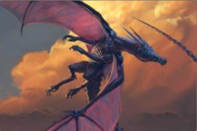 Rapide dragon de combat.jpg