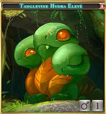 Tanglevine Hydra Elevé-0.png
