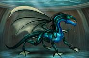 DragonAquatiquelvl8