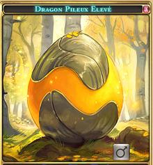 Dragon pileux-0.png