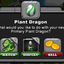 PlantDragonHatch.jpg
