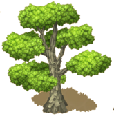 SuperSycamoreTree.png