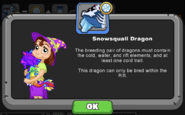 SnowsquallDragonHint