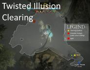 Twisted Illusion