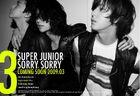 Super-junior-SS Oficial poster 2