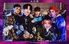 A.C.E (Grupo)13