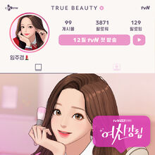 True Beauty Wiki Drama Fandom Пришествие богини / true beauty / yeoshingangrim / 여신강림. true beauty wiki drama fandom