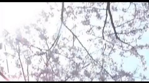 MV 자우림(Jaurim) - Phrygia(프리지아)