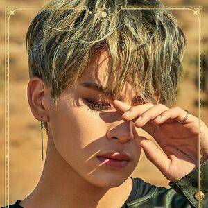 Yoo Tae Yang6.jpg