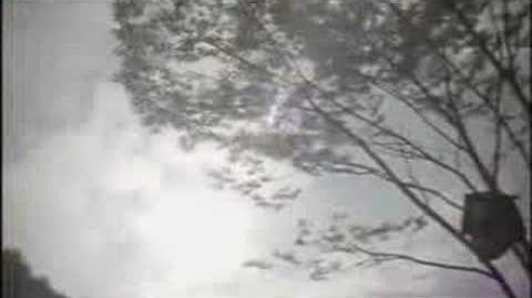 Kim Jong Kook - Star, Wind, Sunlight And Love MV