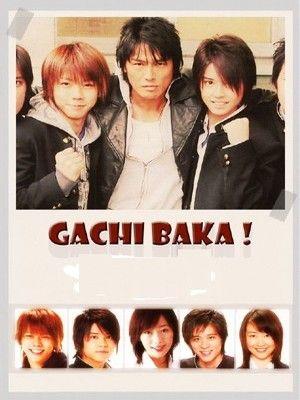 Gachi Baka!