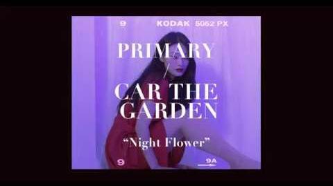 프라이머리(Primary) - 밤꽃 (Night Flower) (feat. 카더가든) 꽃(Flower) ver