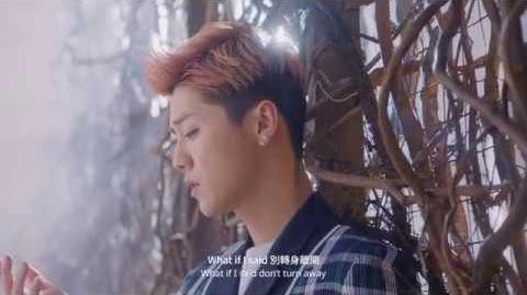 LuHan - What If I Said