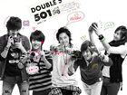Double-ss501