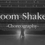 AILEE 에일리 'Room Shaker' Choreography