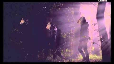 MAN WITH A MISSION - Emotions