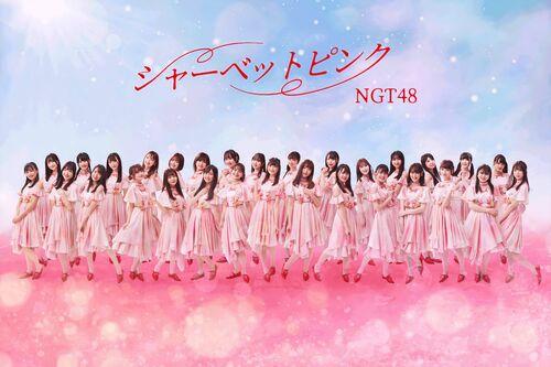 NGT48 5.jpg