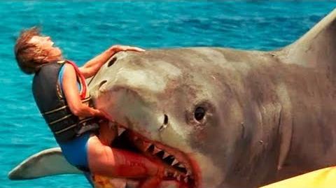10 Worst Shark Attacks Ever Recorded