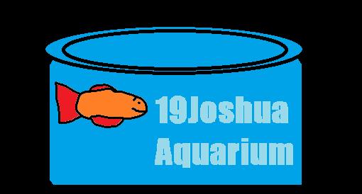 19Joshua