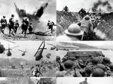 Merriamia War