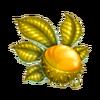 Gold chestnut