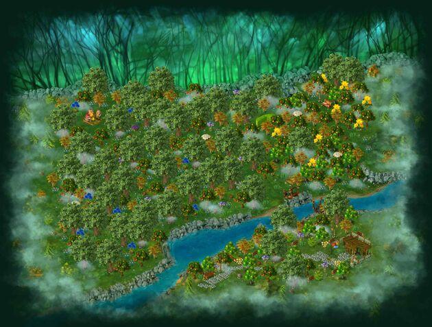 Dark forest area