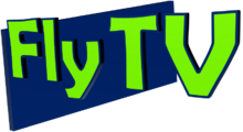 Ftv2008.png