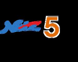 Netz 5 (2).png