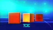 TC2C Cube 2.1 Ident 2017