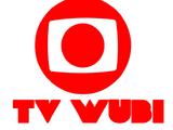 TV Wubi