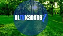 ElTVKadsre1 2010ID Tree