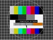 TK94732 Channel 19 FuBK Testcard