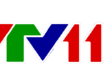 VTV11