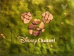 DisneyLawn1999