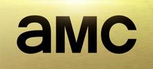 AMC 2013.png