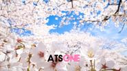 ATS ONE 1997 cherry blossom remake