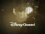 DisneyWoods2002