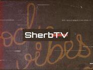 SherbTV logo 1997