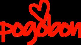 Pogobon 1996-2013.png