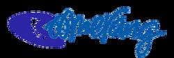Boomerang Logo 2010.png